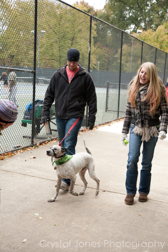 Doggie Walk a Thon Charity Event Photography