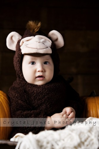 punkin patch special offer portrait sessions in roseville california