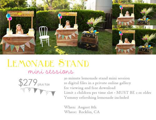 crystal_jones_photography Lemonade-Stand