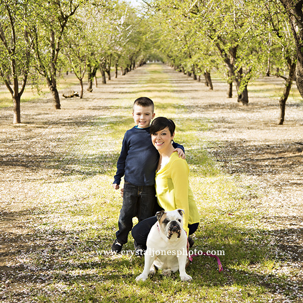 Family Photos in the Almond Orchards of Northern CA