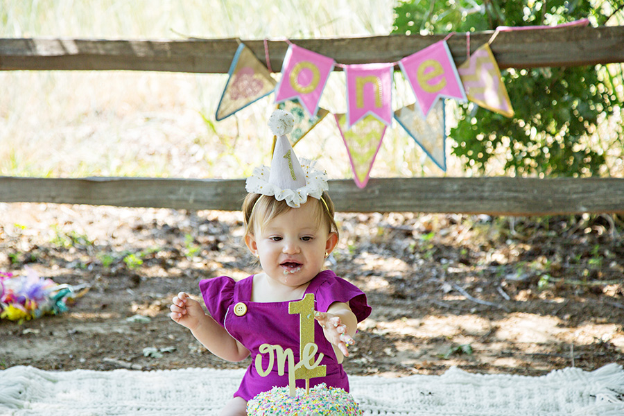 Outdoor Cake Smash for One Year Old Baby Girl 058
