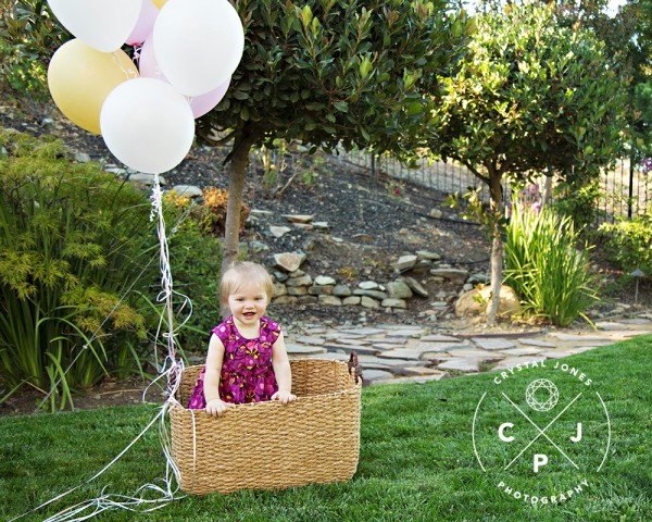 Baby's one year milestone session