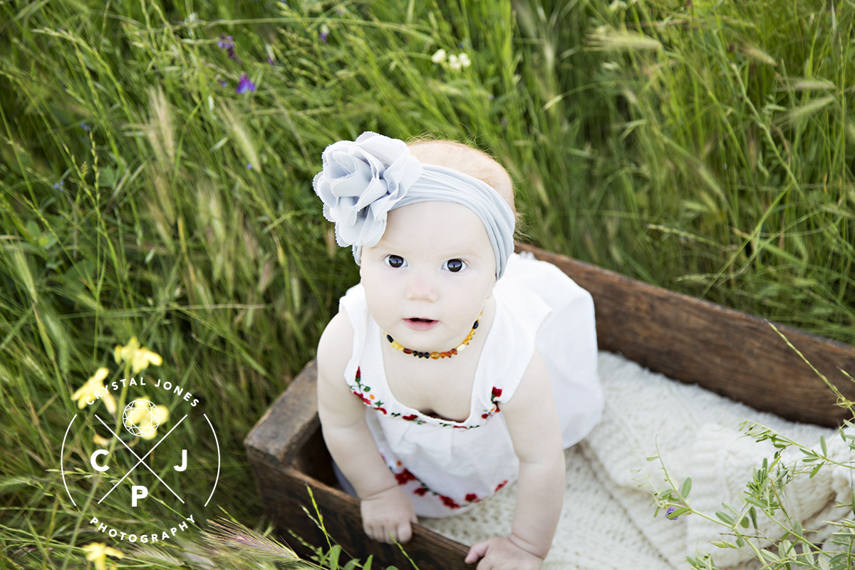 6 month baby portraits in Rocklin CA