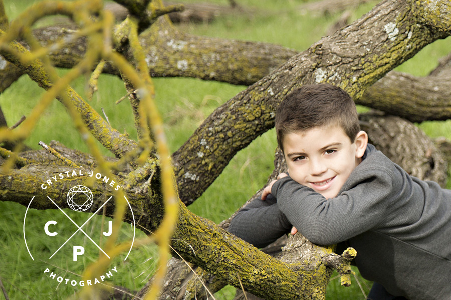 outdoor fall family portraits in a misty forest