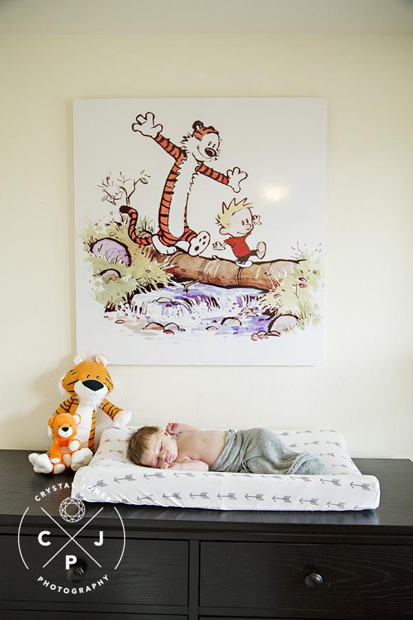 Calvin and Hobbes themed newborn photos