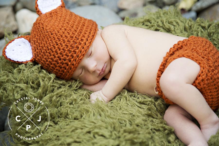 Little fox newborn session in sacramento