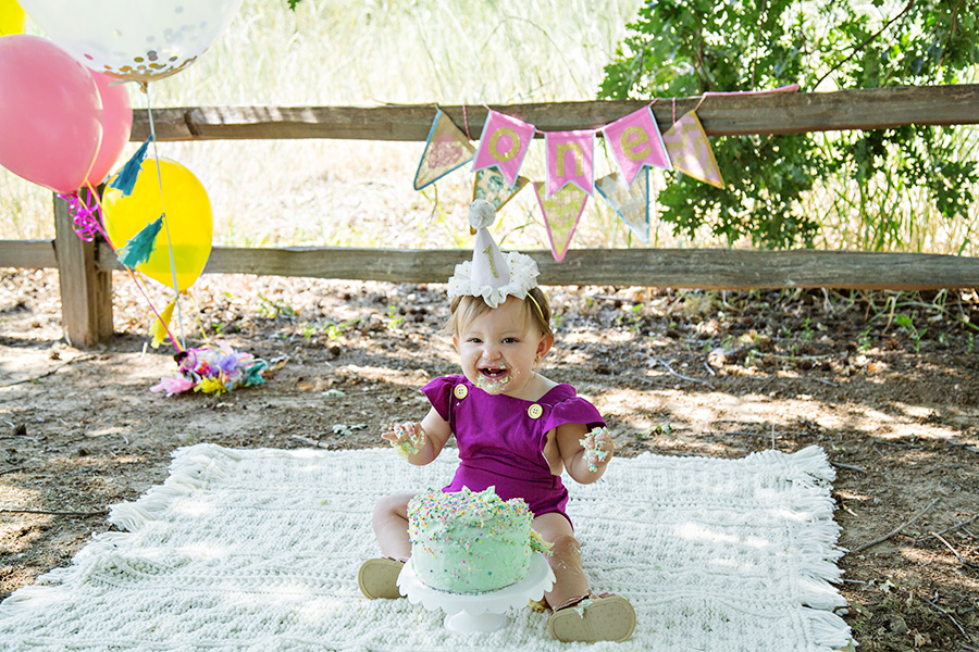 Baby Girl Milestone Session for One Year Birthday