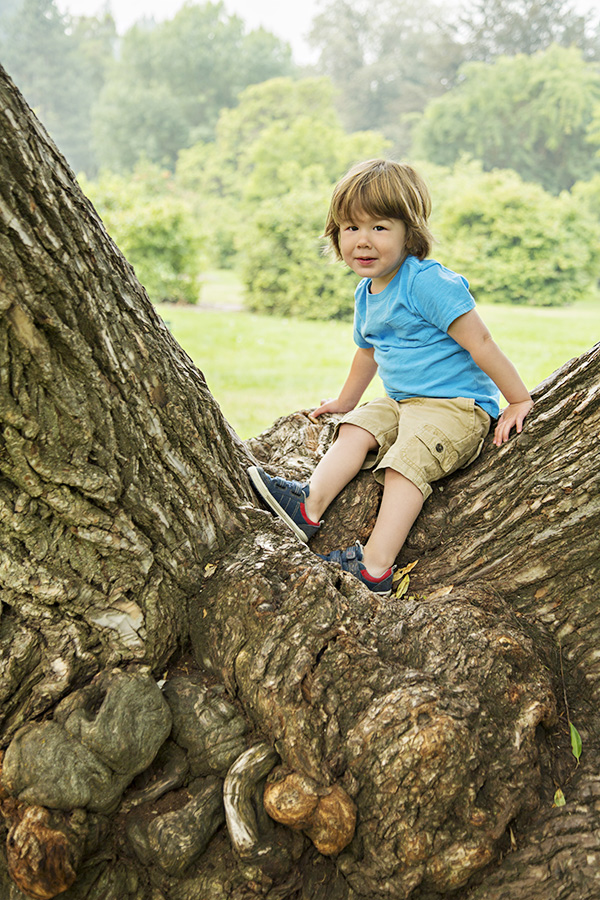 Toddler Portraits in Giant Tree