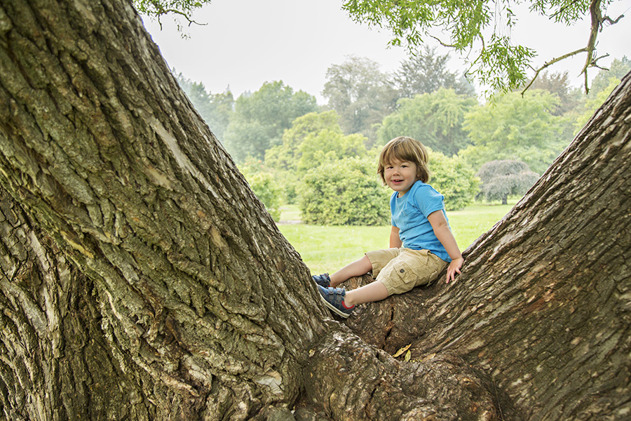 Toddler Portraits in a Giant Tree