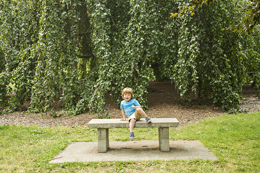 Toddler Portraits in the Park