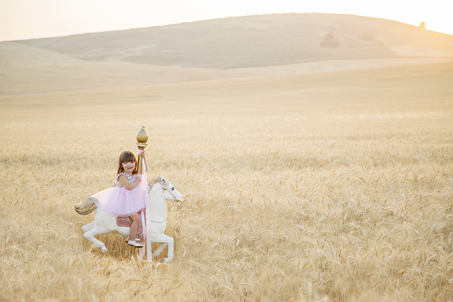 Toddler Portraits on Carousel Horse in Field