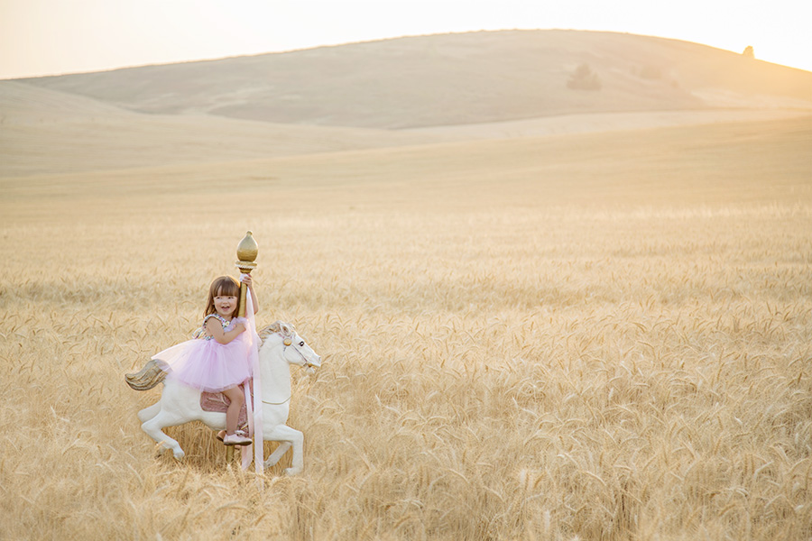 Toddler Portraits on Carousel Horse in Wheat Field