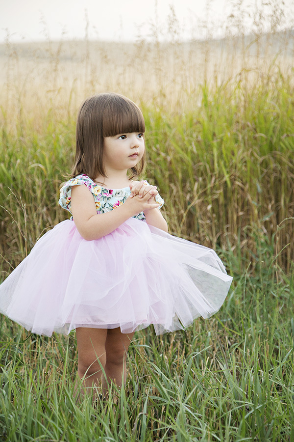 Toddler Second Birthday Portraits in Field