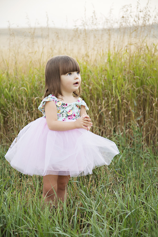 Toddler Second Birthday Portraits in a Field