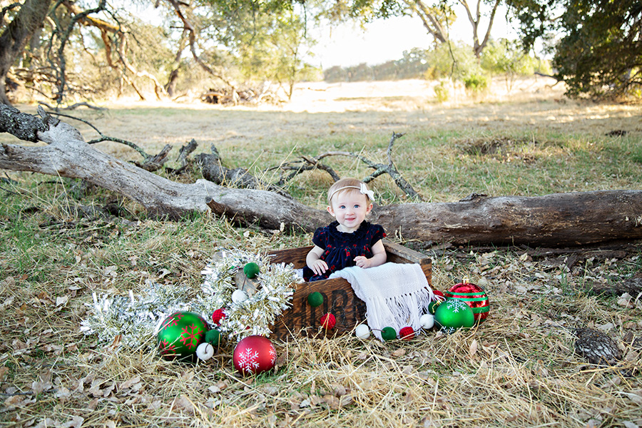 Christmas Photos of 8 month old girl
