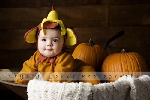 punkin patch portraits in roseville california