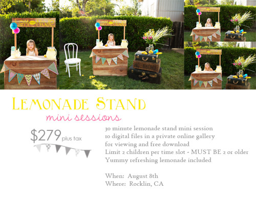 crystal_jones_photography Lemonade-Stand