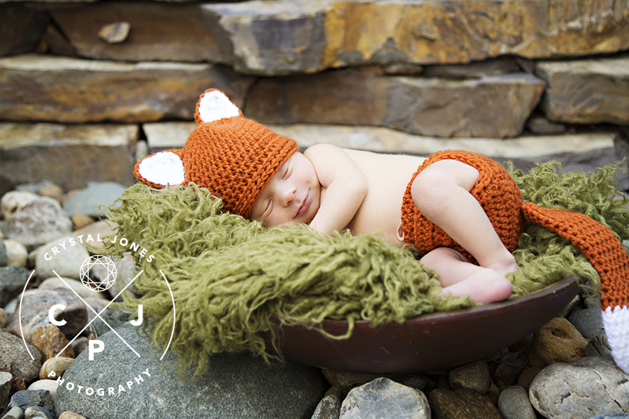 Little fox newborn session in sacramento