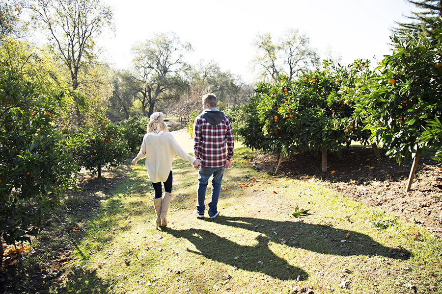 Fun engagement portraits in a mandarin orchard