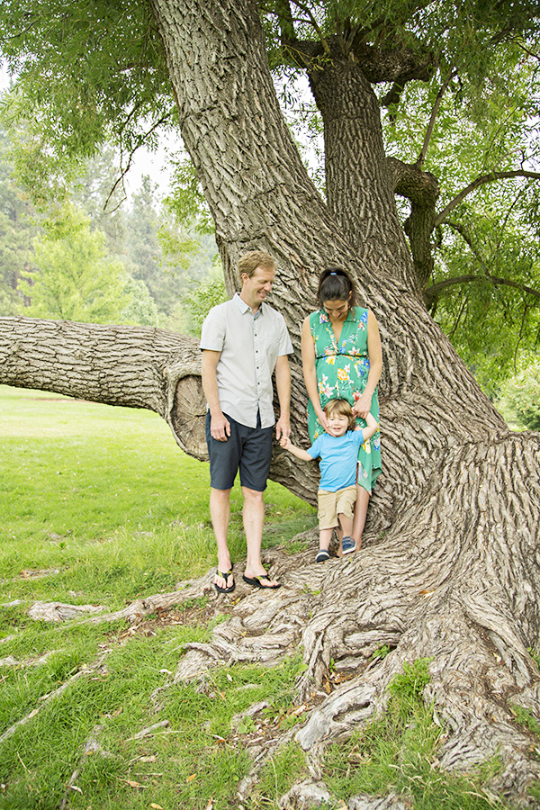 Outdoor Family Photos in Giant Tree