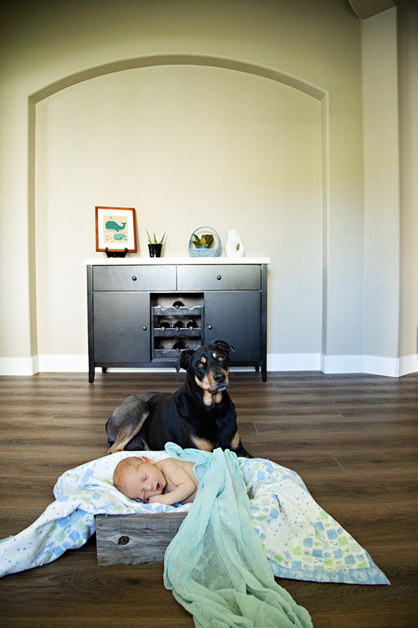 Newborn-Portraits-with-Dog-in-Sacramento-CA